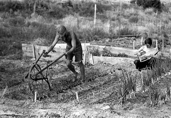 [Photo of New Mexico couple plowing by hand]